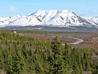 2 Nights Denali National Park - Denali Princess Wilderness Lodge