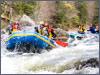 AlaskaCruises.com's Shore Excursions
