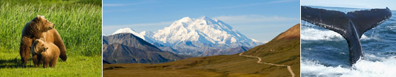 Alaska Frequently Asked Questions