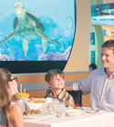 Disney Cruise Lines Dining