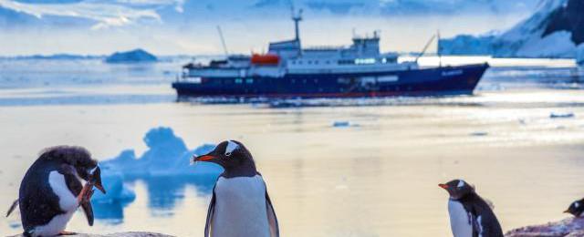 Cheap Antarctica Cruises