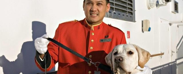 Cunard Line Dog Kenneled Onboard