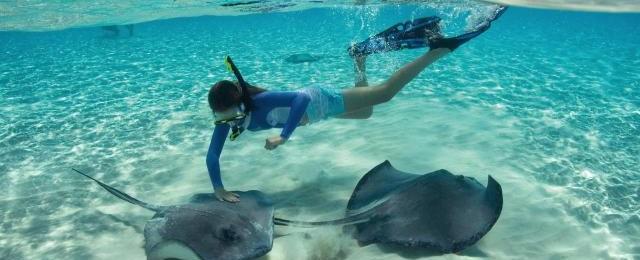 Carnival Cruises Snorkeling